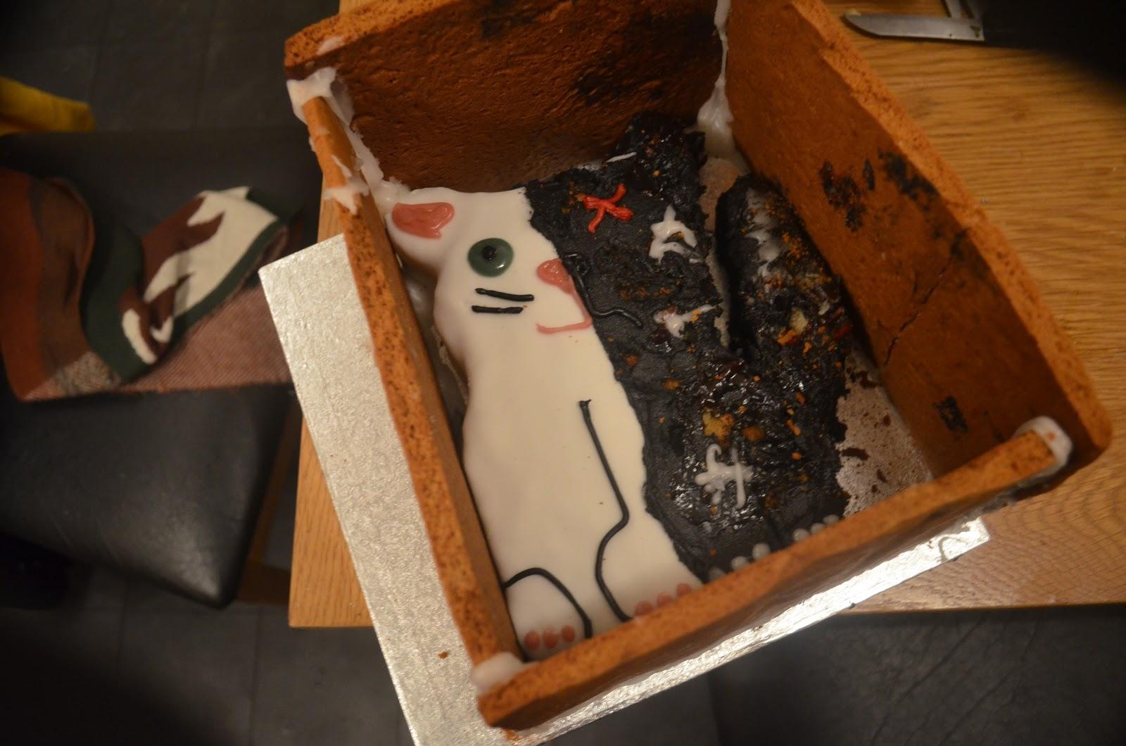 Things Like Schrodinger S Cat