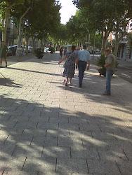 Paseando el perro por Paseo Prim
