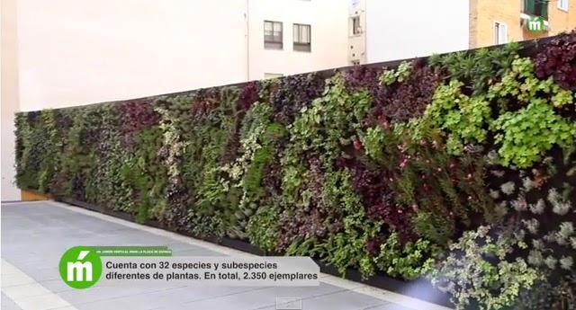 jardin vertical mostoles