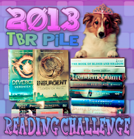 2013 TBR PILE Reading Challenge
