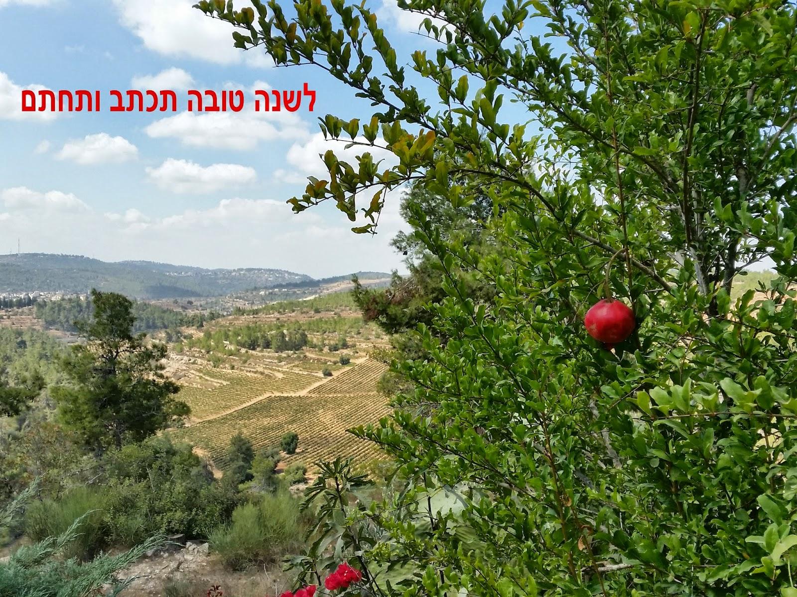 Israel Vision Tv Shana Tovarosh Hashanah 5775