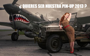 ¿QUIERES SER NUESTRA CHICA PIN UP 2013 ?