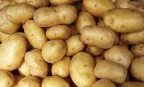 krompiric