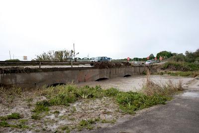Carretera de Cortes. Puente sobre el Salado. (febrero 2010)