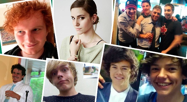Emma Watson, Harry Sytles, Scarlett Johansson et James Franco ont tous des doubleurs