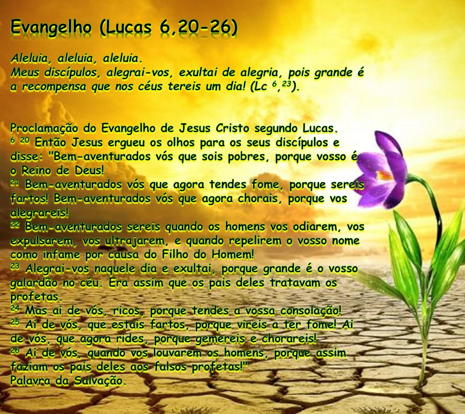 evangelho do dia de hoje Com Reflexão flor