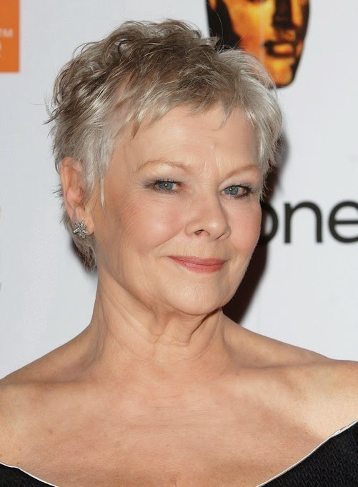 http://casaideia.blogspot.com/2015/04/3-short-haircuts-for-women-over-50-are.html