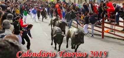 Festa Brava nas Ruas de Espanha