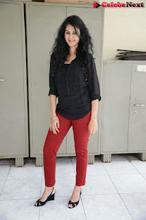 Actress Kamna Jethmalani Latest Pictures in Jeans at Gulf Andhra Music Awards 2013 Press Meet  0078.jpg