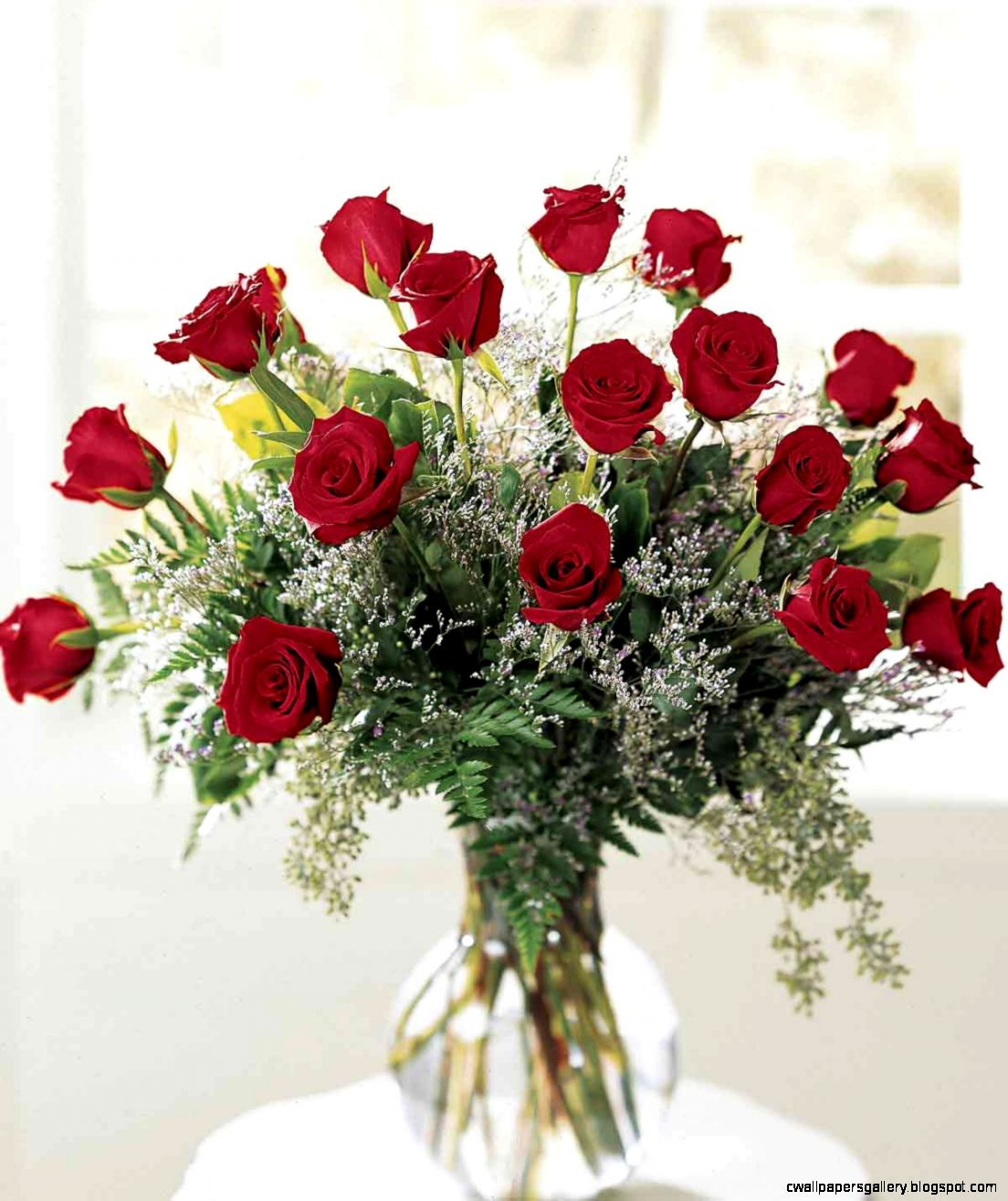roses   Google Search  Roses to appreciate  Pinterest  Red Rose