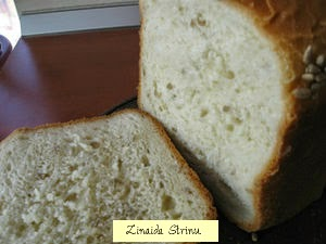 paine-de-casa-facuta-la-masina-3