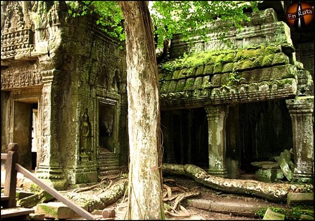 Ta-Prohm-Templos-de-Angkor_7