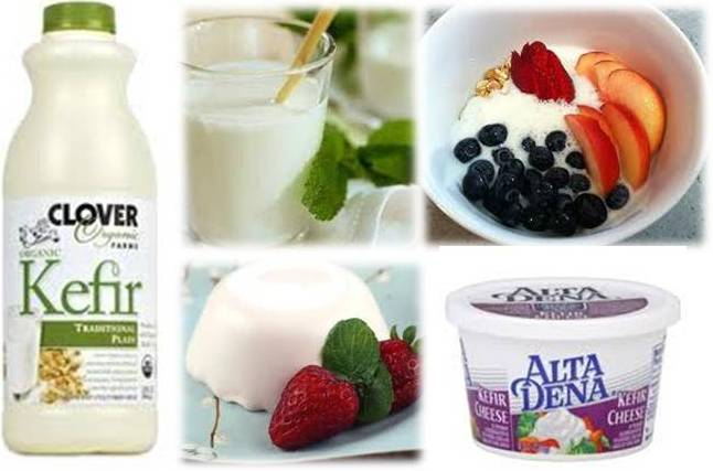 Best Yogurt With Probiotics >> Ottawa Valley Dog Whisperer Foods Rich In Probiotics Beneficial