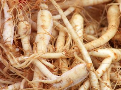 Manfaat Ginseng Untuk Kesehatan Tubuh