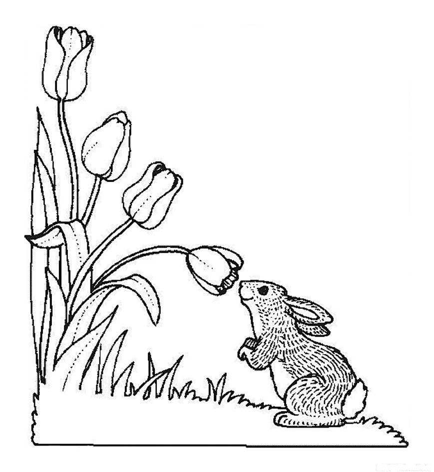 Картинки и раскраски о весне