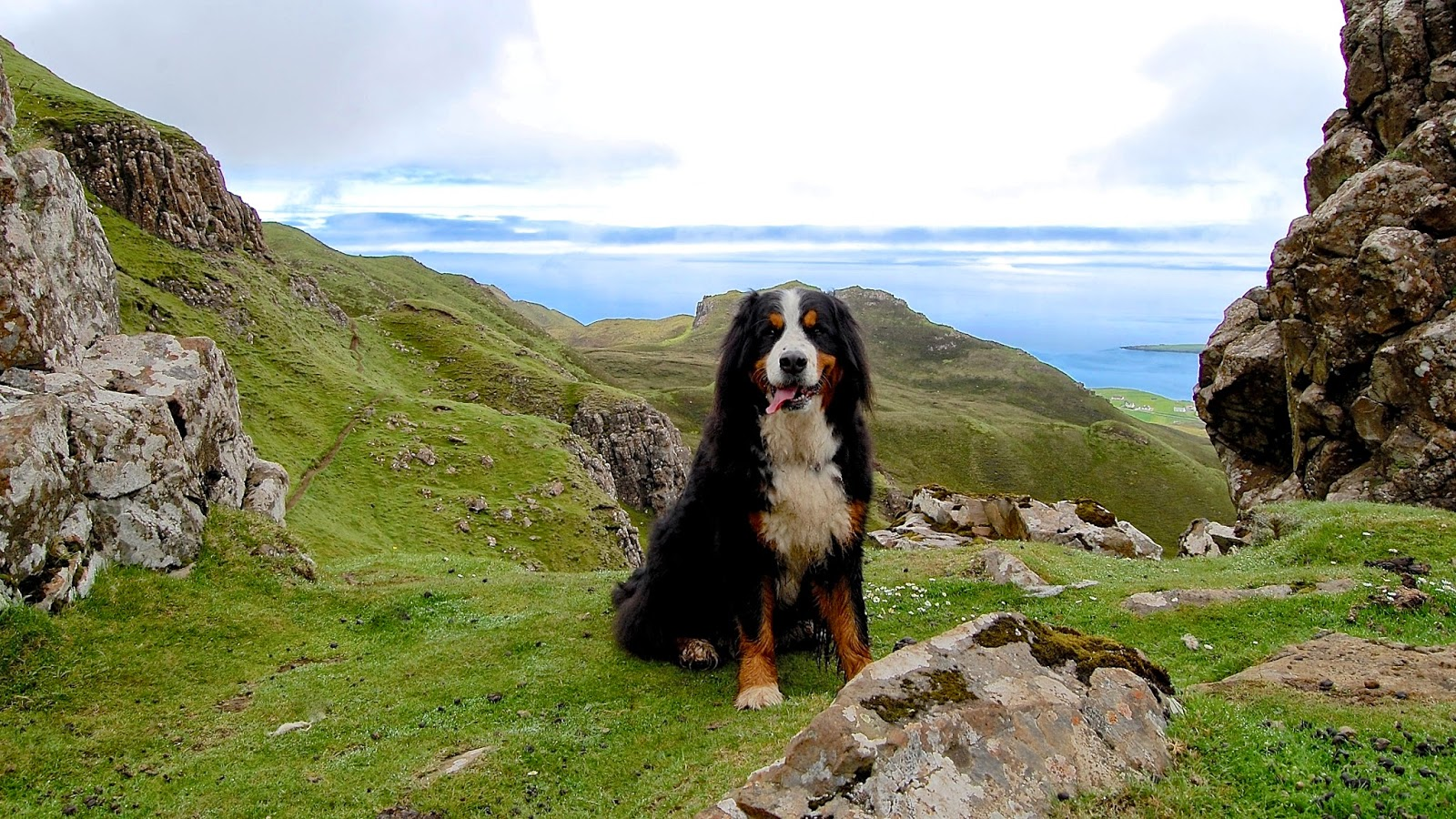 Mattie hiking on the Quiraing on the Isle of Skye