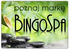 http://bingospa.pl/