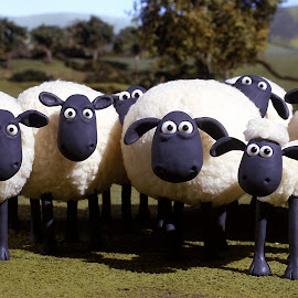 gambar-gambar Shaun the Sheep