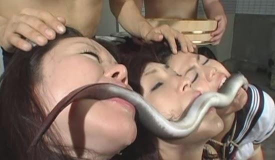 Mafia Japonesa e mulheres infiéis - www.bombounaweb.net