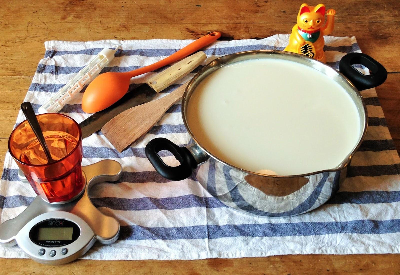 La laiterie de paris je fais de la tome fra che pour un - Fabrication de yaourt maison ...
