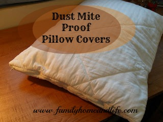 Hill House Homestead My Recycled Reused Dust Mite Proof Pillow