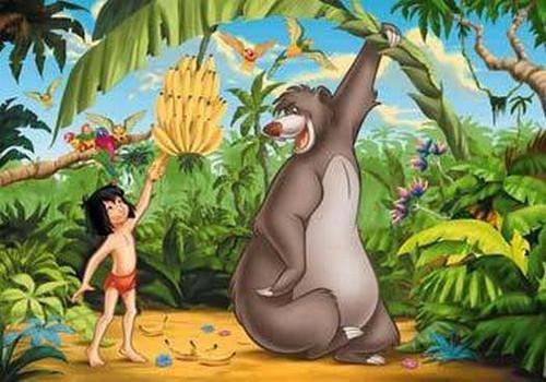 Rincón de cuentos infantiles el libro la selva