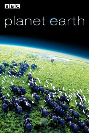 Poster Planet Earth 2006