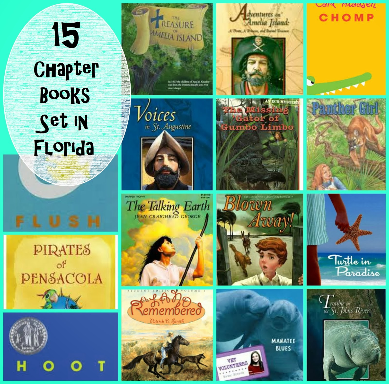 Teaching Star Students 15 Chapter Books Set In Florida For 4th Graders