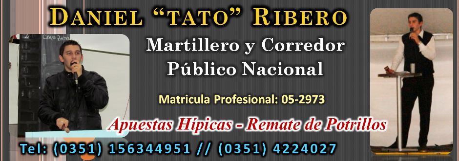 Tato Ribero - Martillero