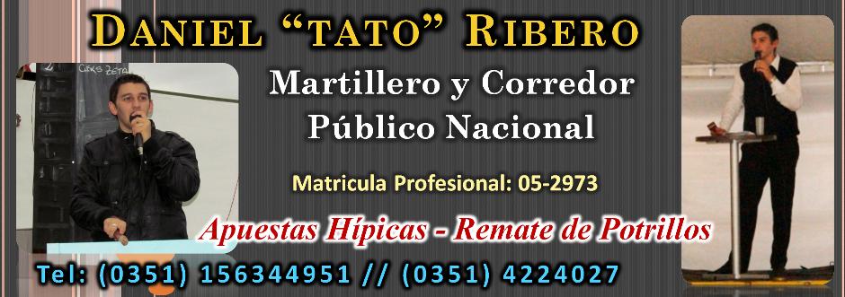 Tato Ribero - Martillero