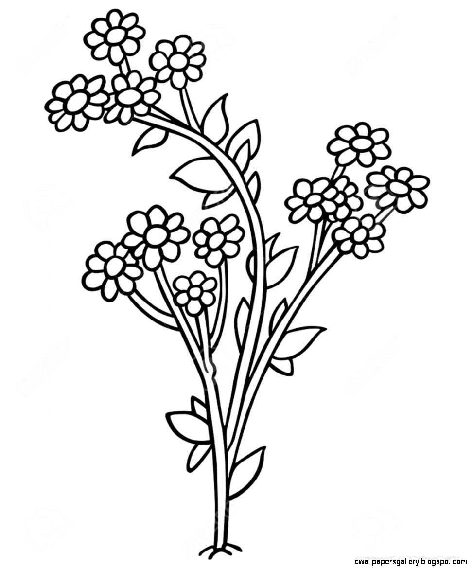 Flowers   Black And White Cartoon Illustration Royalty Free