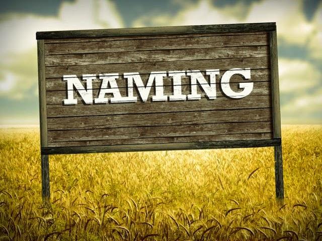 Naming no Brasil