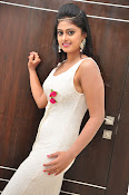Meghasri new sizzling photo gallery-thumbnail-1