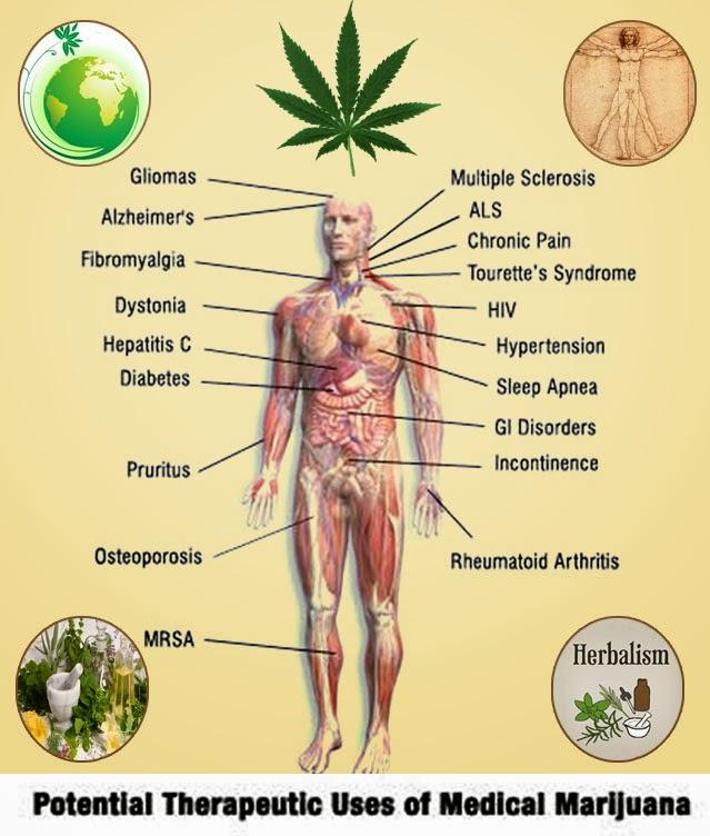 second hand marijuana smoke on pregnancy