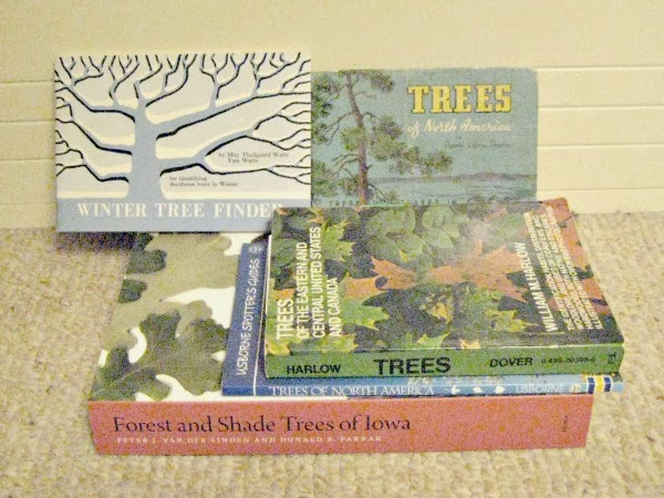 tree identification books