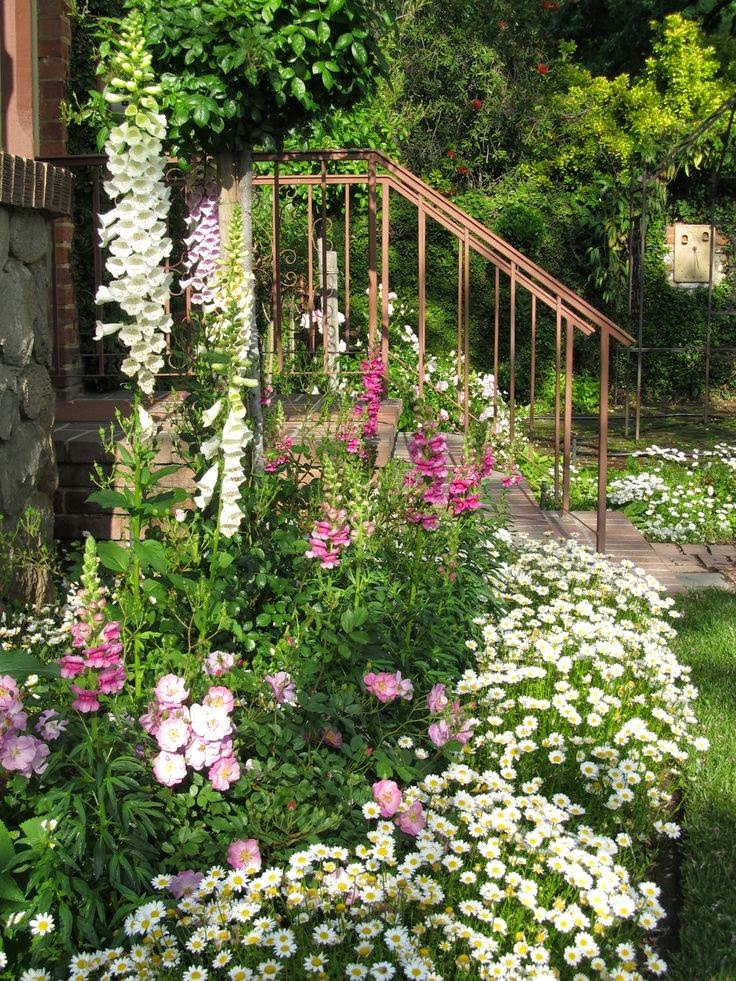 Flowers gardens outdoor garden plants flowers - Flowers planted may complete garden ...