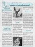 http://www.vida-universal.es/downloads/jesusylosanimales103.pdf
