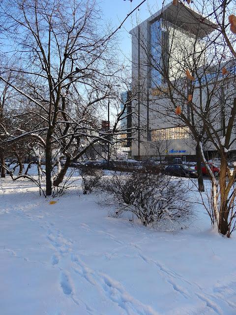 Witolin. Po drugiej stronie ulicy Ostrobramskiej siedziba telewizji Polsat