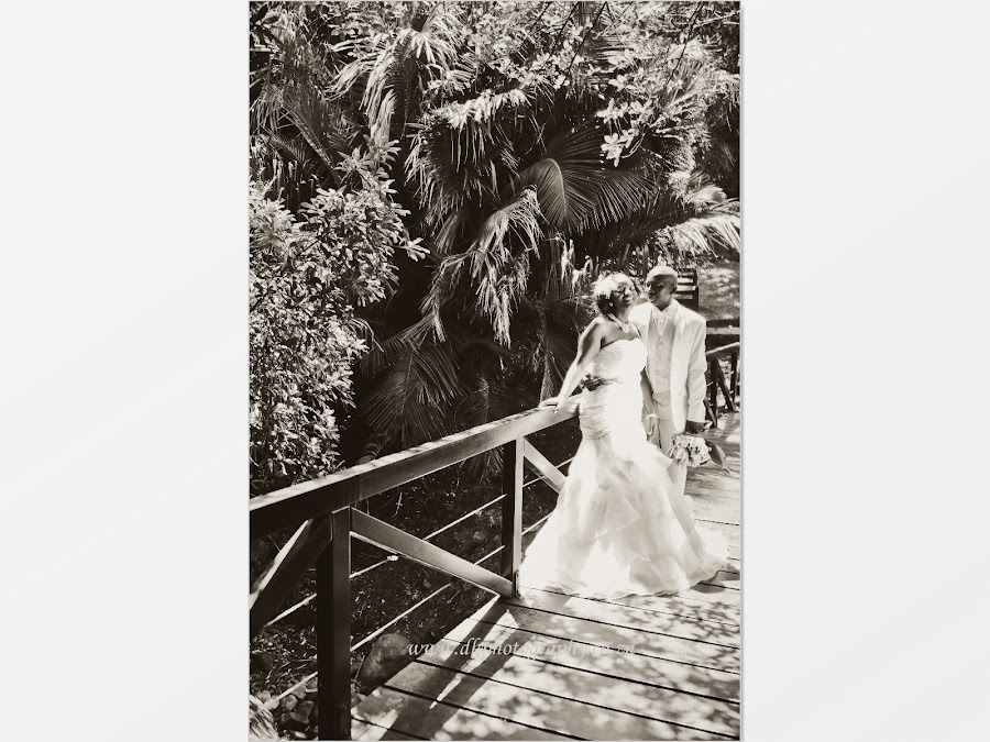 DK Photography Slideshow-2087 Noks & Vuyi's Wedding | Khayelitsha to Kirstenbosch  Cape Town Wedding photographer