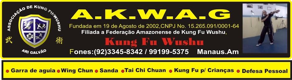 Artes Marciais, Academia, Associação, Kung Fu, Wushu, Manaus, Amazonas Ari Galvão
