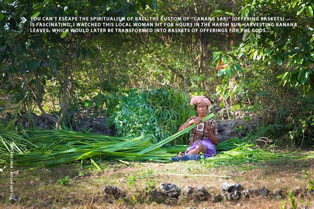 Balinese woman harvesting banana leaves in Indonesia (Photo: Claire Butler / What She Saw)