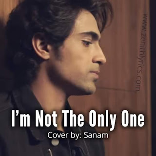 I'm Not The Only One Lyrics - Sanam