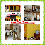 habiba homestay