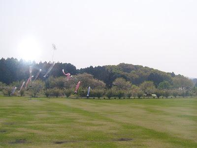 宮崎県・西都原古墳群こいのぼり・・・