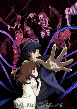 Big order episódios online anime