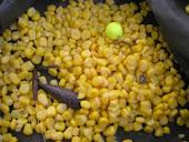 fluopops fruit boom bun spice big carp