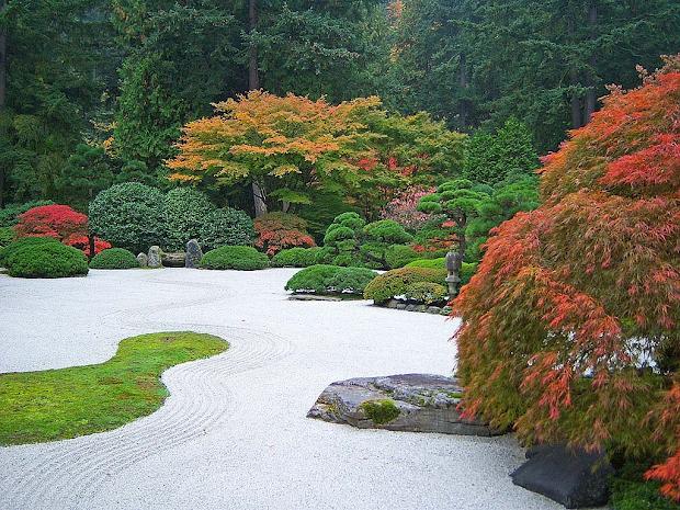 gardening with wyatt coffee grounds