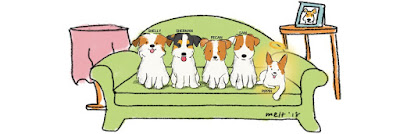 Sam, Pecan, Pippin, Shelly and Sherman - Dog blog Singapore