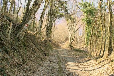 Planinarska staza 35