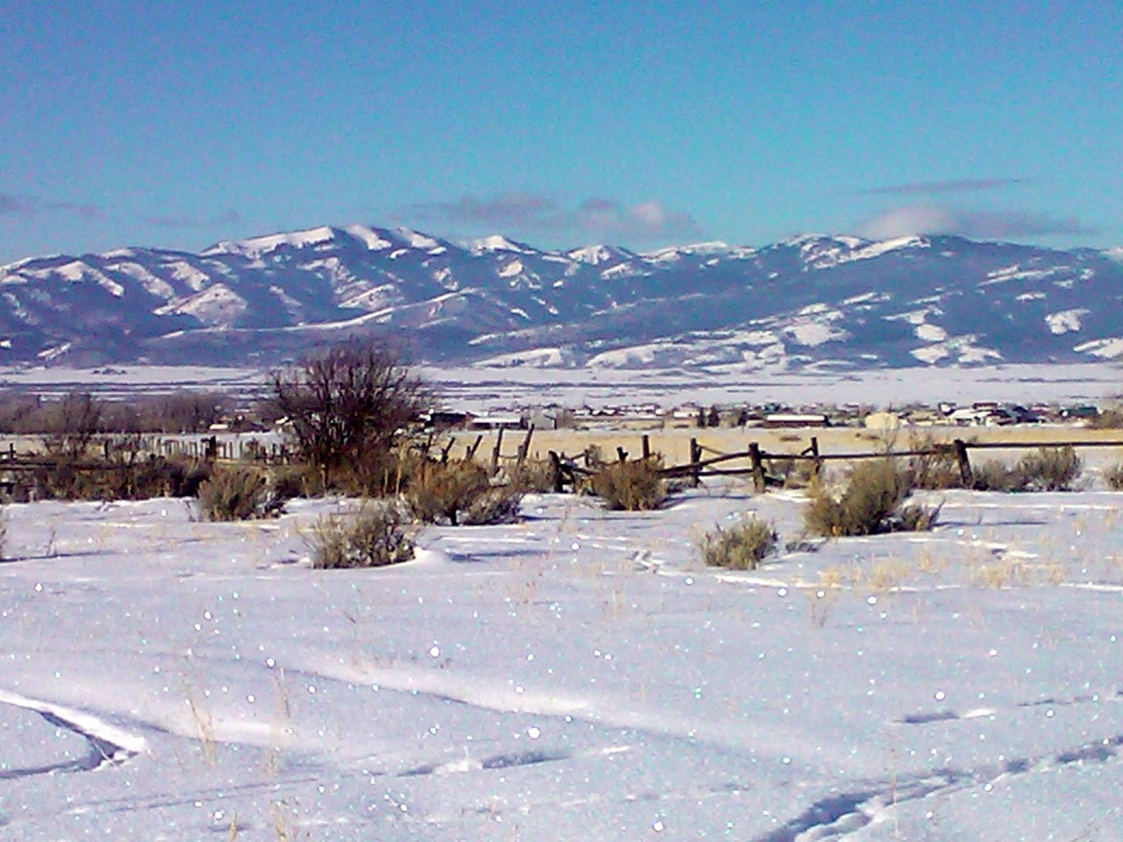 Happy Holidays from Driggs, Victor, and Teton Valley, Idaho.